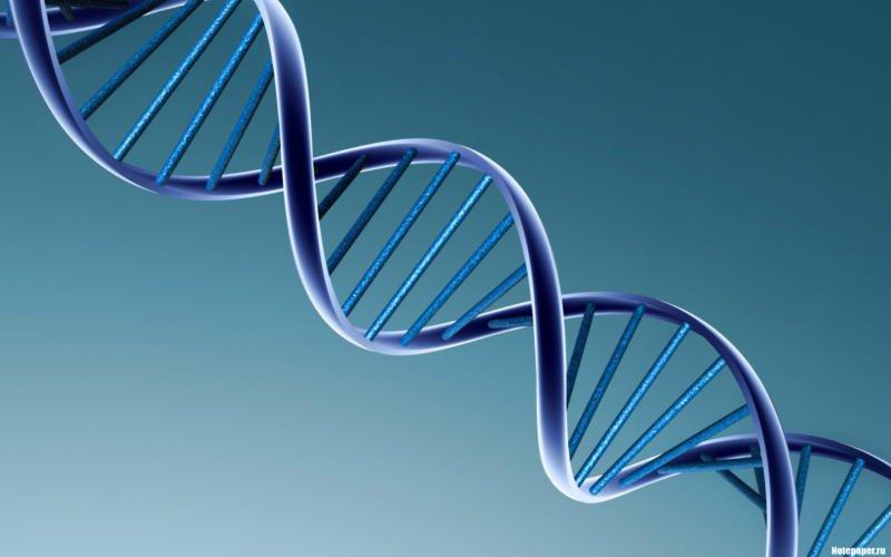 ДНК рыбы берут на анализ в Англии