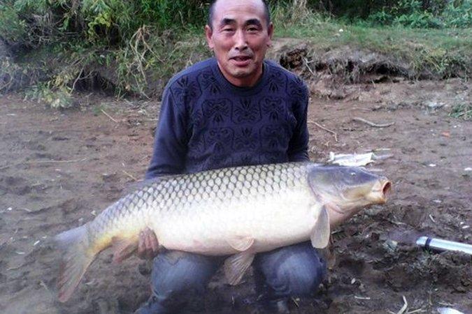 Карпа 24 кг поймал рыбак из Бурятии