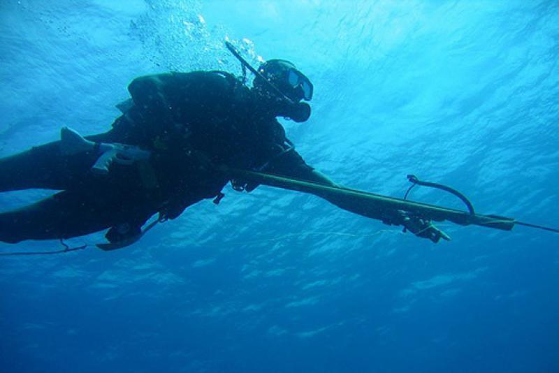 Подводное ружье демка