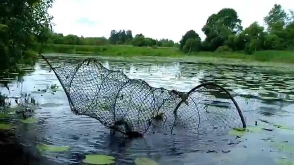 как ловить на мордушку рыбу видео