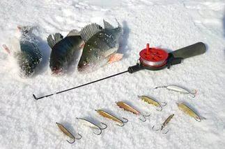 Как выбрать удилище для зимней рыбалки