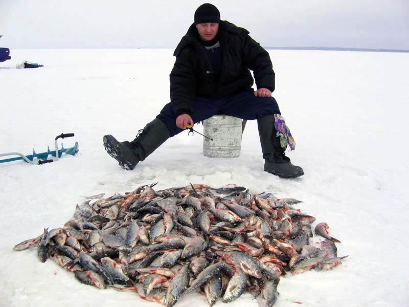 платная зимняя рыбалка