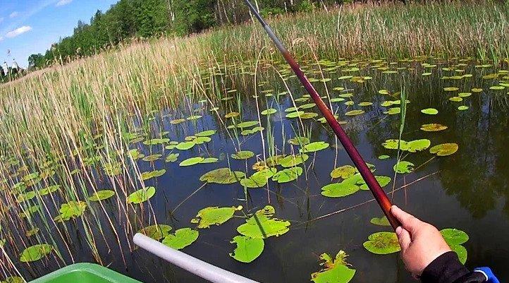Рыбалка в зарослях на озерах и речках